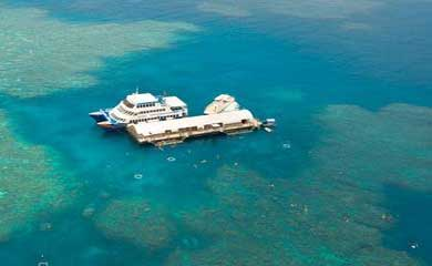 reef trips from Cairns
