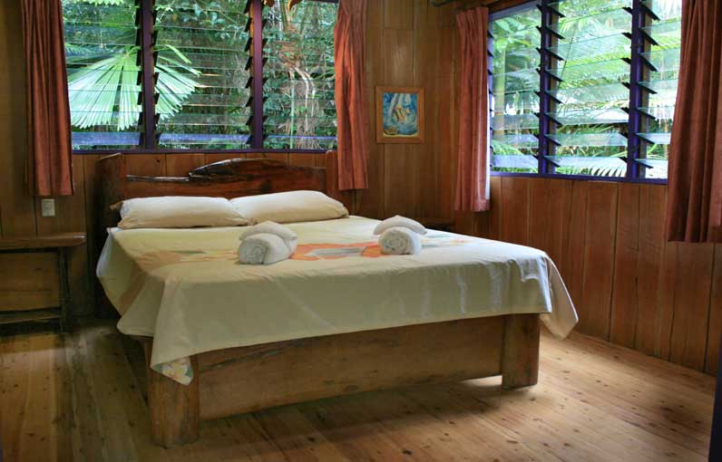 bed and breakfast accommodation at cape tribulation in the daintree rain forest