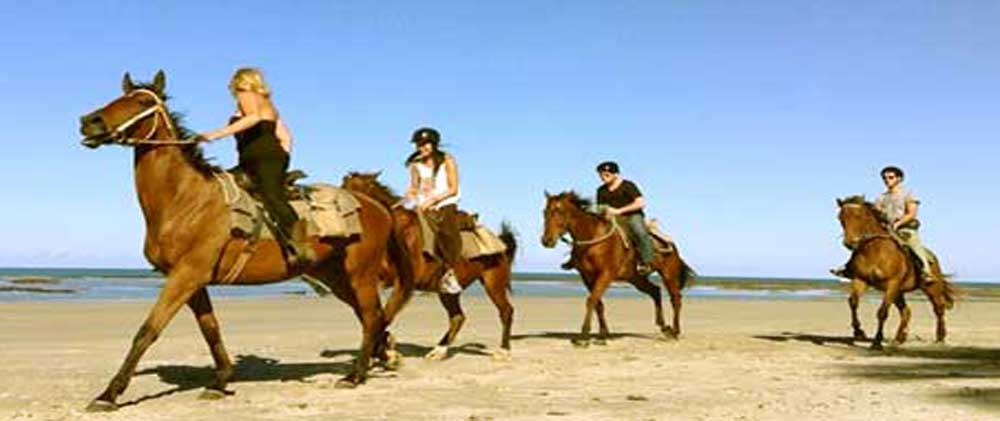 horse riding on Myall Beach in Cape Tribulation