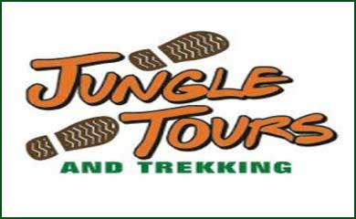 Jungle Tours to Cape Tribulation