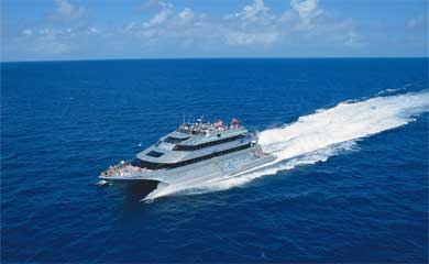 reef trips from Port Douglas