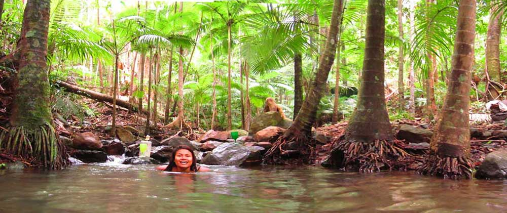 Swim in a rainforest stream at Cape Tribulation