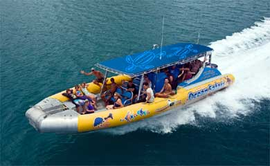 reef snorkel trips from Cape Tribulation
